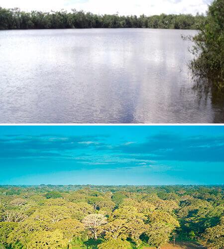 Laguna Manatí